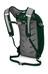 Osprey Daylite Backpack Ever Green